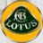 Compro Lotus usate